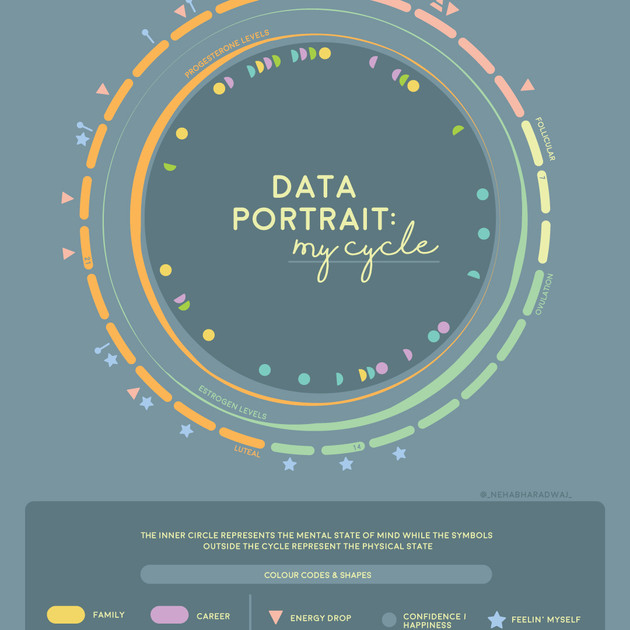 Data Portrait: My cycle