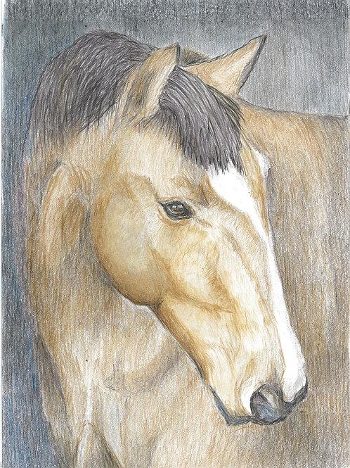 Brown Horse - A4