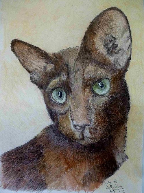 Meya The Cat - A4