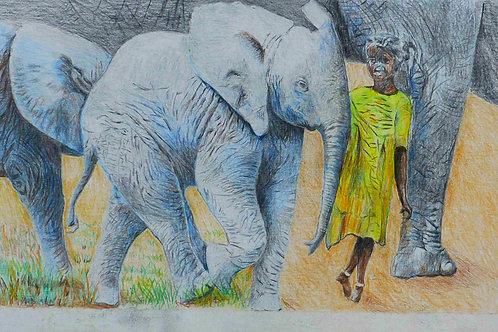 Elephants an Girl