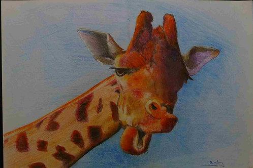 Giraffe - A3