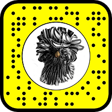 CHICKEN SNAPCODE