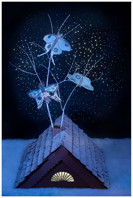 Moon Bright Starry Night_Post Card.jpg