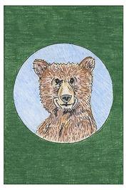 bear with border + detail.jpg