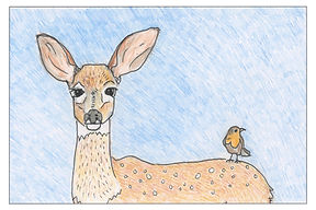 fawn with border + detail.jpg