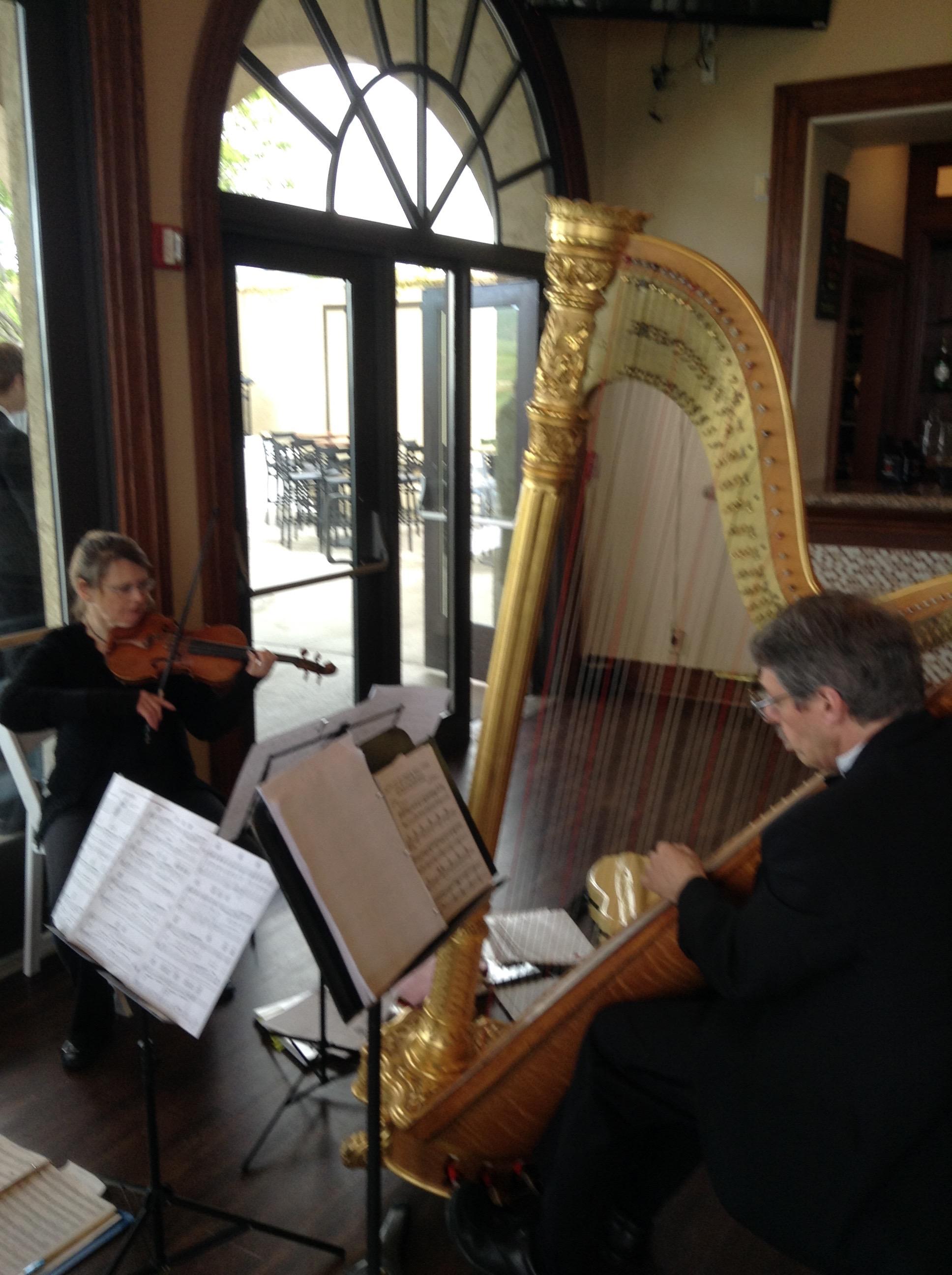 Violin-Harp