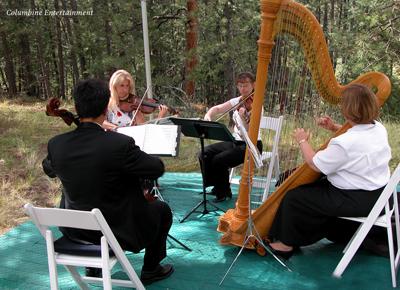 trio_harp