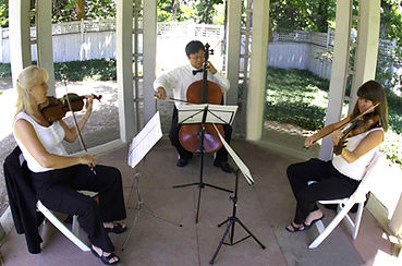 2 violins cello trio