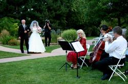 Violin, Trumpet, Cello trio