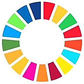 Sdg_icon_wheel_rgb-290x290_edited.jpg