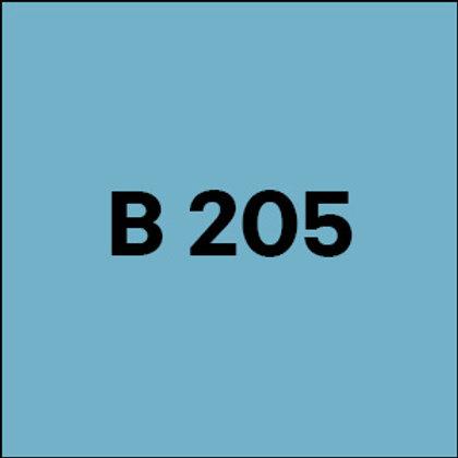 B 205 - 2017