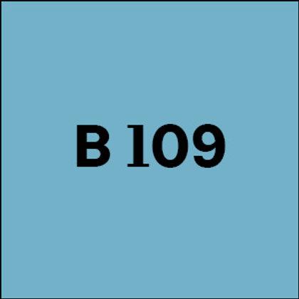 B 109 - 2010