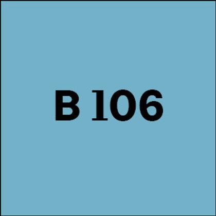 B 106 - 2010