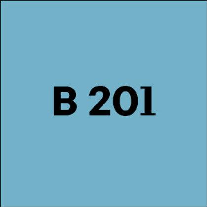 B 201 - 2017