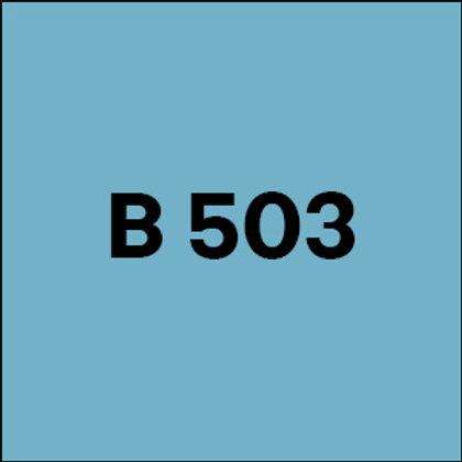 B 503 -2007