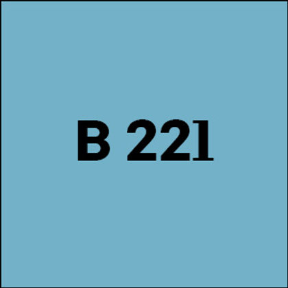 B 221 - 2018