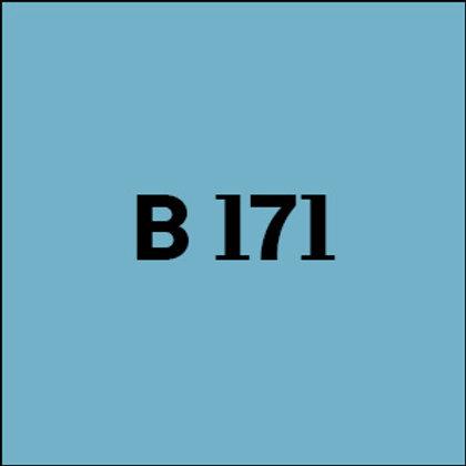 B 171 - 2013