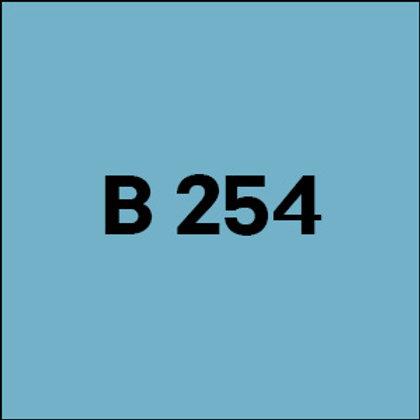 B 254 - 2019