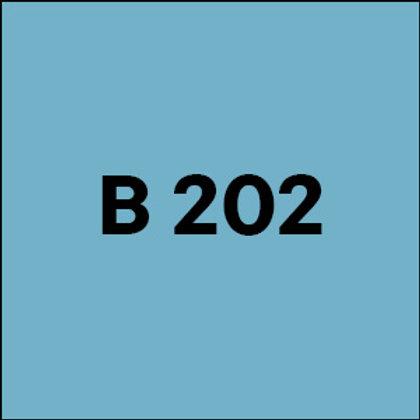 B 202 - 2009