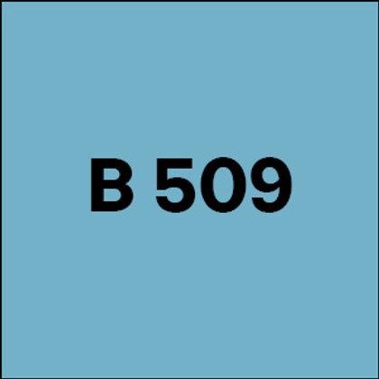 B 509 -2010
