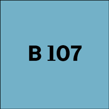 B 107 - 2010