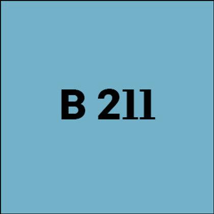 B 211 - 2007