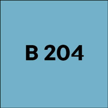 B 204 - 2007