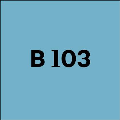 B 103 - 2017