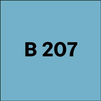 B 207 - 2017