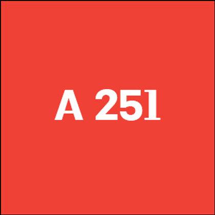 A 251 - 2007