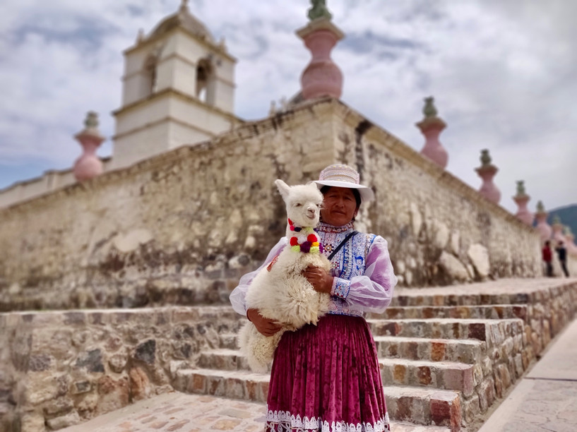 Maca - Arequipa - LlamaTrip