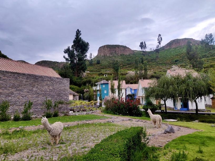 Aranwa Hotel Colca Canyon