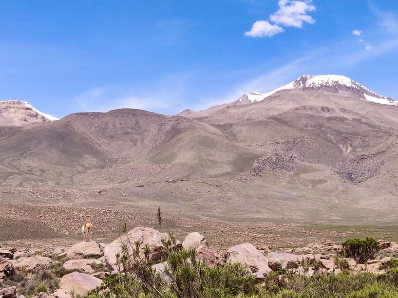 Salinas and Aguada Blanca National Reservation
