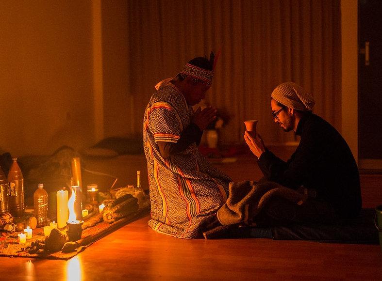 ayahuasca llamatrip.jpg