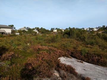 Taksering i kystperlen Kragerø