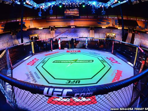 סטטיסטיקת הקרבות ב UFC - שאול זגהר