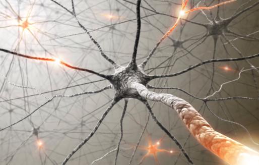 נוירולוגיה וג'יו ג'יטסו, נקודות למחשבה - יונתן גלזר