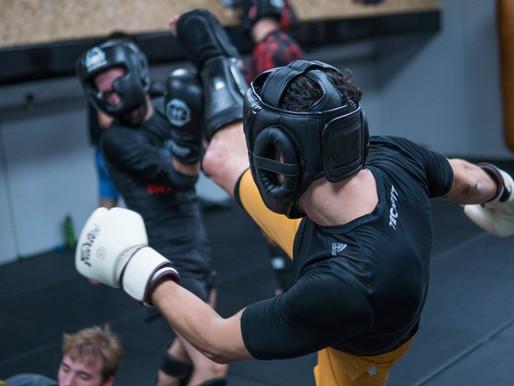 הסטוריה של אומנויות לחימה משולבות MMA