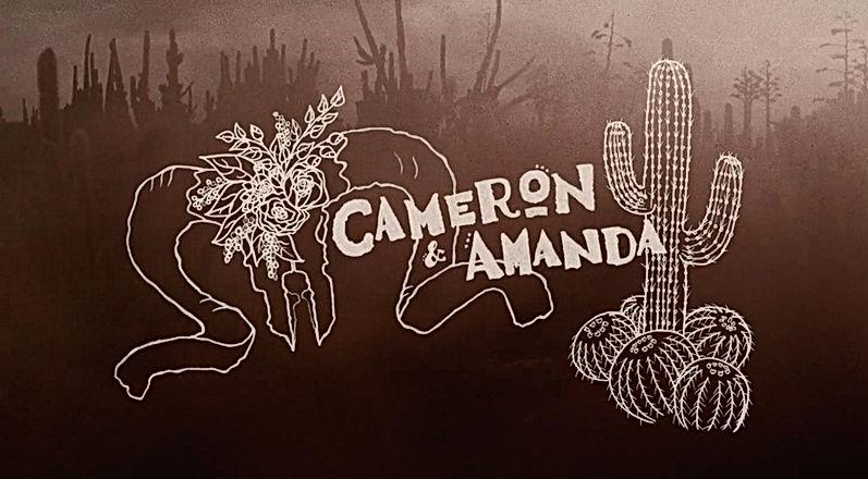 Cameron + Amanda screenshot.jpg