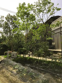 家庭菜園(新築庭工事)