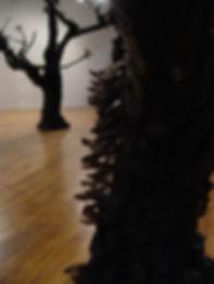 Budding Grove 3.JPG
