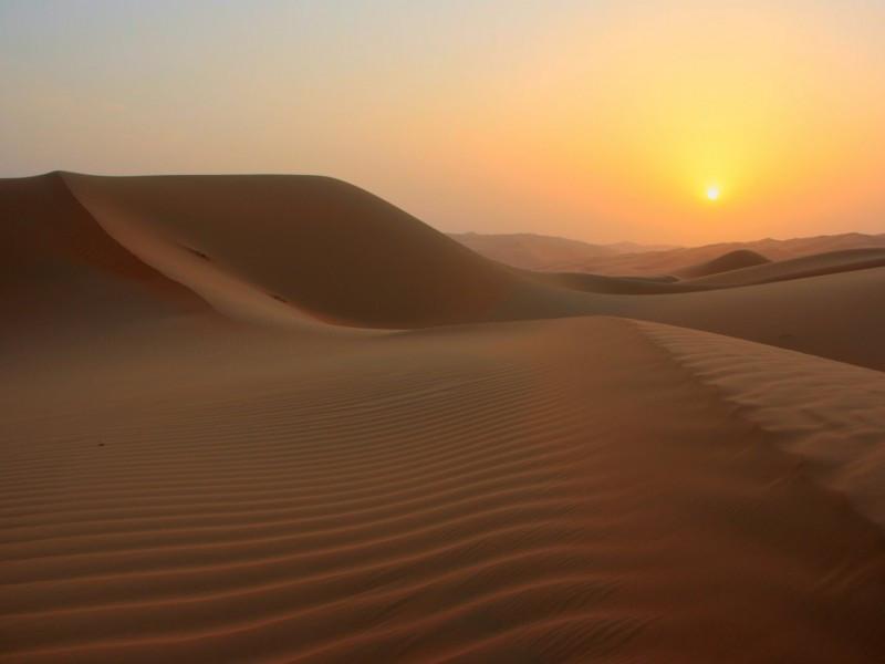 MATINEE DANS LE DESERT