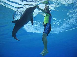 Dolphinbay-Underwater-male.jpg