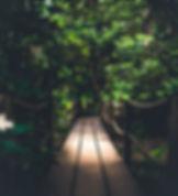 front_path.jpg