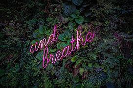 group_breathe.jpg