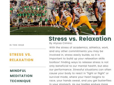Wellness Newsletter Volume #3