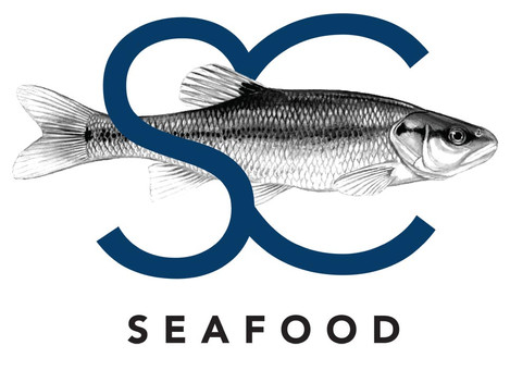 Steve Costi Seafood Logo Design