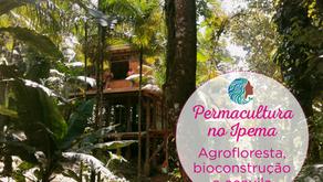 Permacultura no IPEMA – ecovila, agrofloresta e bioconstrução