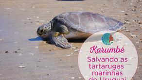 Karumbé - Salvando as tartarugas marinhas do Uruguai