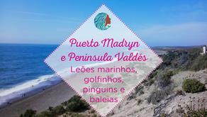 Puerto Madryn e Península Valdés – leões marinhos, golfinhos, pinguins e baleias